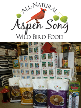 aspen song Bird food